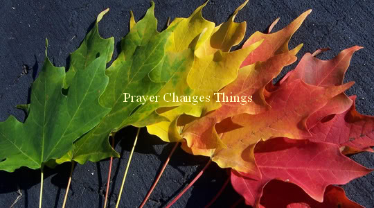 colourful-leaves Prayer Changes Things